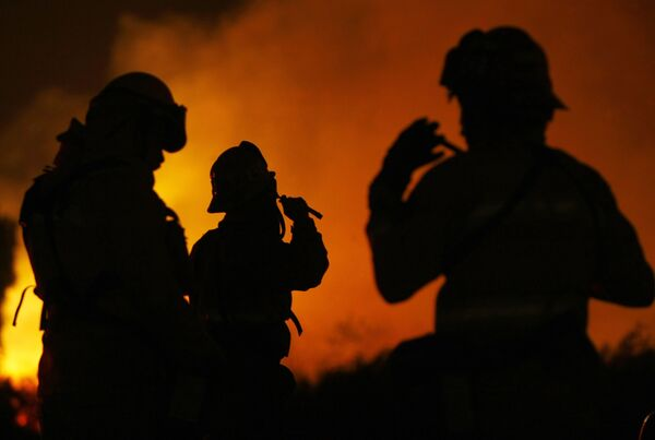 Половина из 20-30 тысяч ежегодных пожаров в лесной зоне происходит путем намеренного поджога, из-за чего убытки доходят до 1,6 миллиарда австралийских долларов ежегодно.