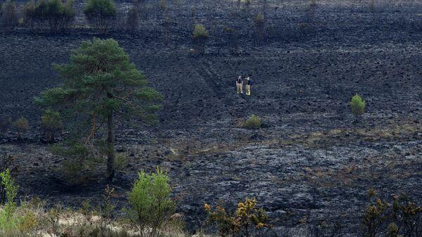 Пожарные на территории Эшдаунского леса после пожара. 29 апреля 2019