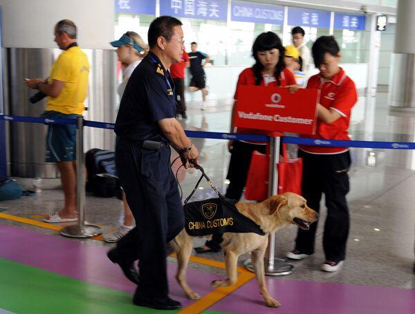 Сотрудник таможенной службы в Международном аэропорту в Пекине
