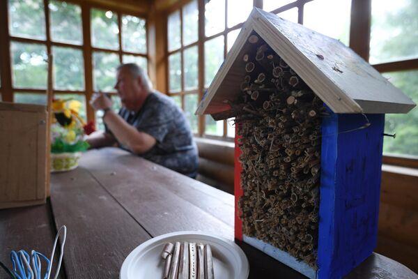 Домик для насекомых с природным материалом