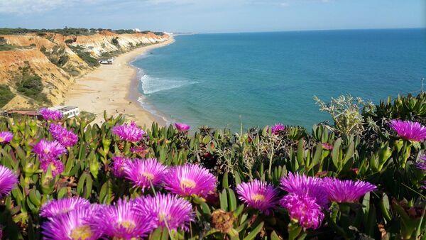Алгарве. Панорама пляжа