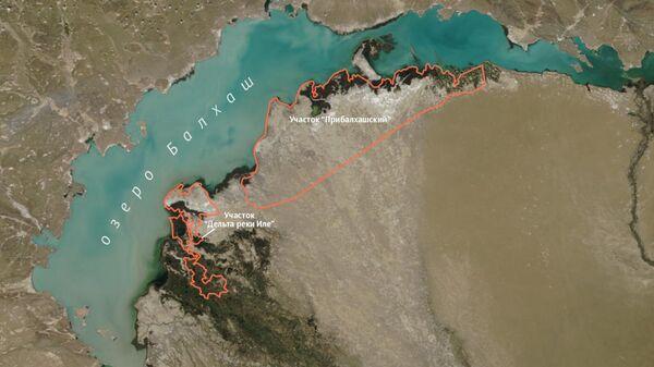 Резерват Иле-Балхаш в Казахстане создан для реинтродукции амурского тигра в Центральной Азии