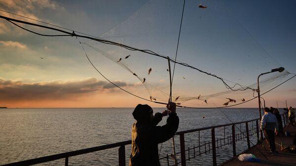 Al Jazeera: Россия коварно поднимает украинцам цену на рыбу
