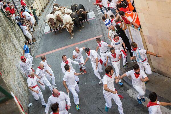 Участники фестиваля Сан-Фермин во время забега с быками в Памплоне