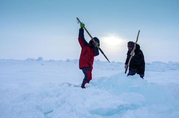 Строительство взлетно-посадочной полосы дрейфующего ледового лагеря Барнео в районе Северного полюса в Арктике