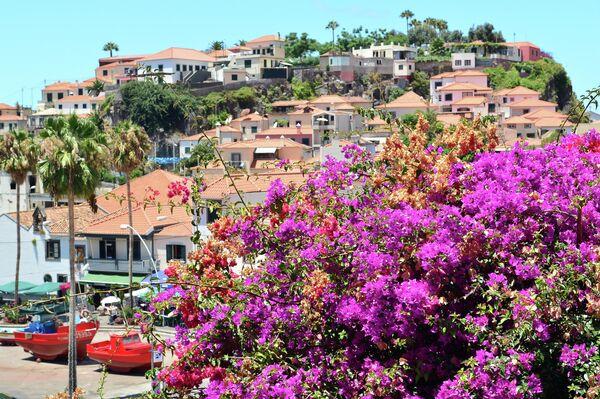 Цветы на улицах города Камара-ди-Лобуш на острове Мадейра