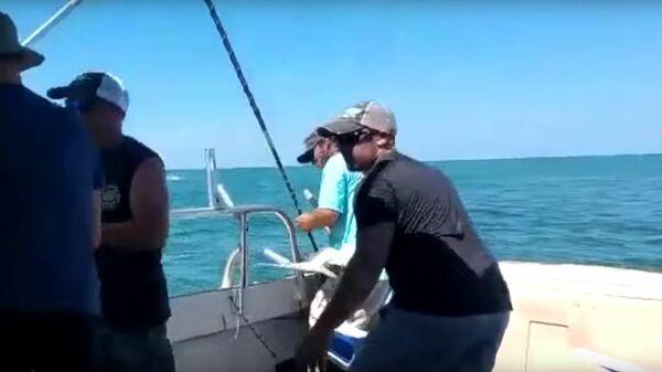 В США акула укусила за ногу поймавшего ее рыбака