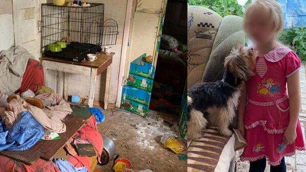 Среди собак и грязи: в Саратове девочка жила на псарне в полной антисанитарии