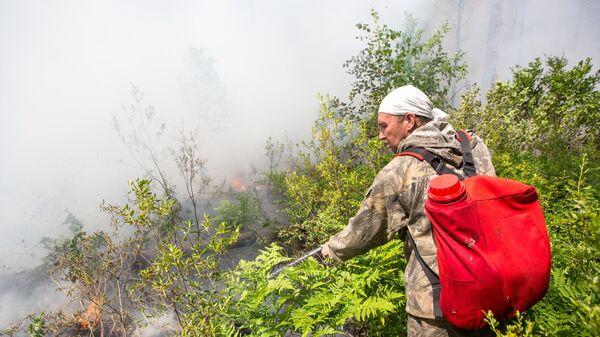 Сотрудник лесной охраны тушит лесной пожар