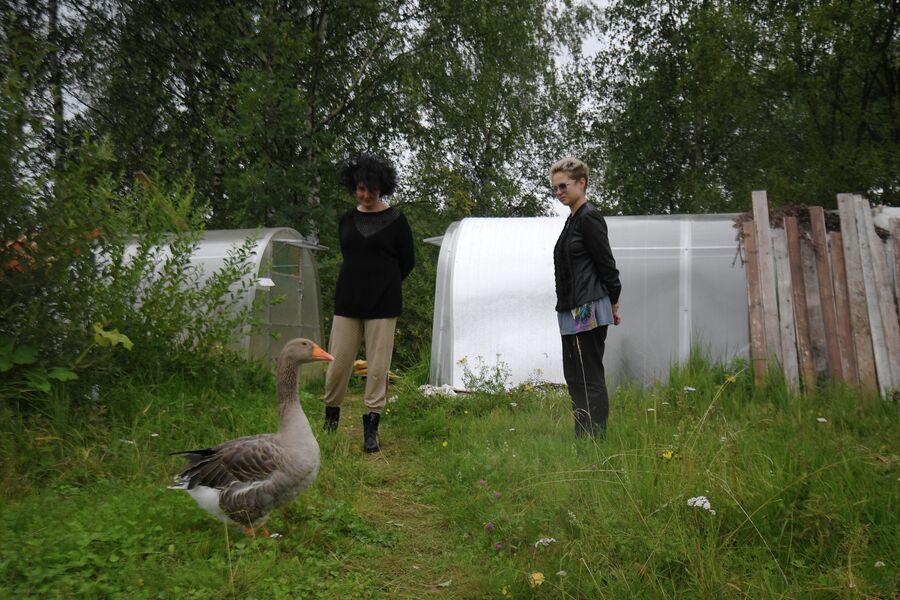 Алена и Настя наблюдают за гусем Иви