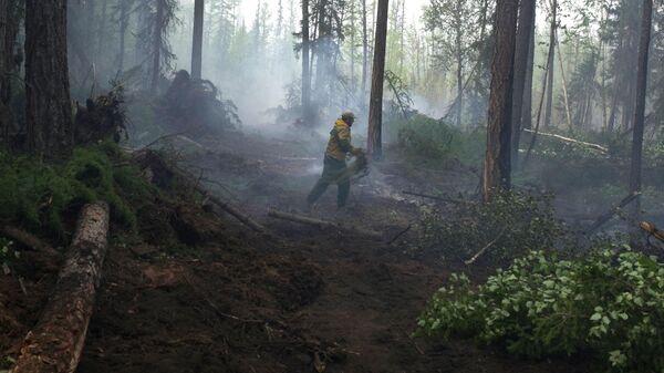 Сотрудник лесохраны во время ликвидации лесного пожара