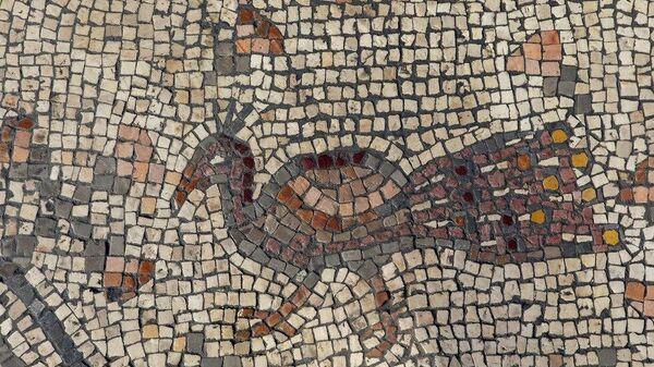 Мозаики, открытые научно-исследовательской группой и института Зинман