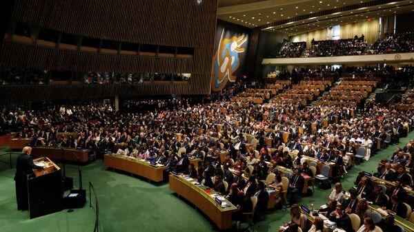 74-я сессия Генеральной Ассамблеи ООН