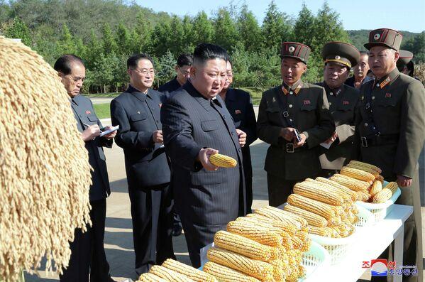 Лидер Северной Кореи Ким Чен Ун во время посещения фермы