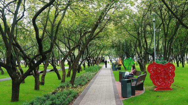 Аллея в парке Яблоневый сад в Бирюлево Западном