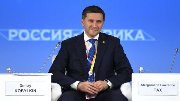 Министр природных ресурсов и экологии РФ Дмитрий Кобылкин на экономическом форуме Россия - Африка в Сочи