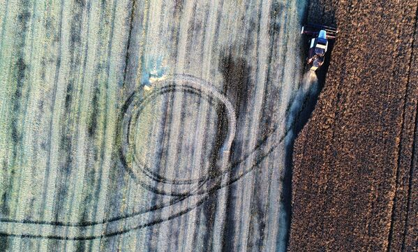 Комбайн во время уборки урожая рапса в Красноярском крае