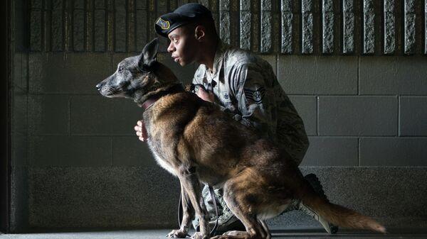 Сержант армии США со служебной собакой породы Малинуа