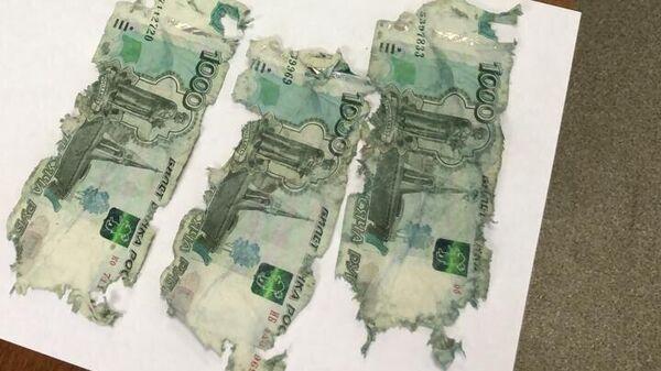 В Москве пойманный на взятке полицейский попытался съесть 10 тысяч рублей