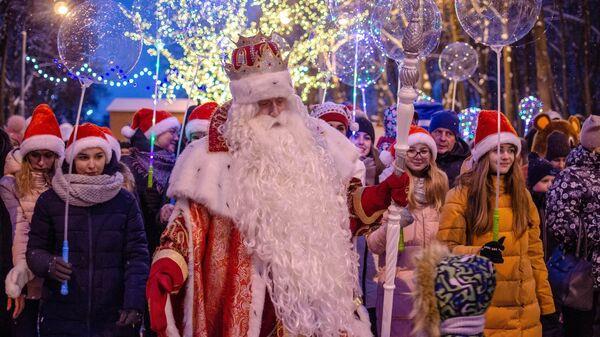 Новогодние украшения в Рязани