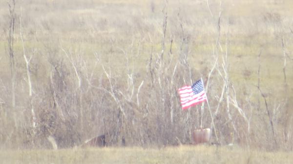 Флаги США на позициях украинских силовиков у линии соприкосновения в Донбассе