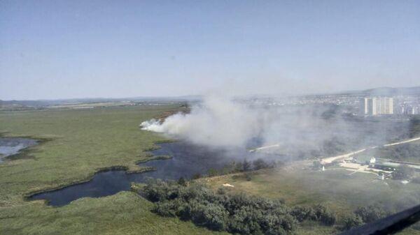 Возгорание камыша в Анапе