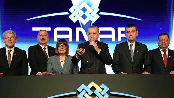 Президент Турции Реджеп Тайип Эрдоган на церемонии открытия Трансанатолийского газопровода (TANAP). 30 ноября 2019