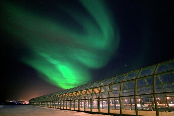 Музей и научный центр Арктикум в Рованиеми