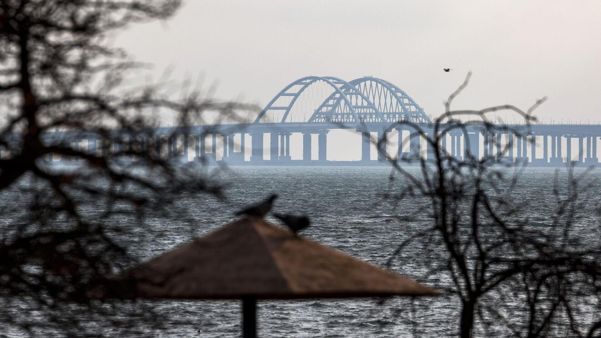 Вид на Крымский мост со стороны Керчи - РИА Новости, 1920, 30.07.2021