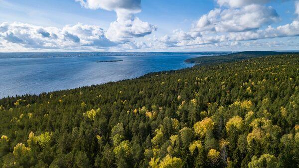 Экологический проект москвички победил на конкурсе ООН