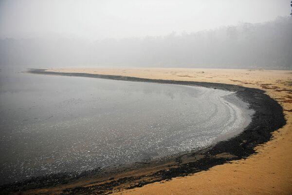 Пепел на берегу реки в Эдеме, Австралия