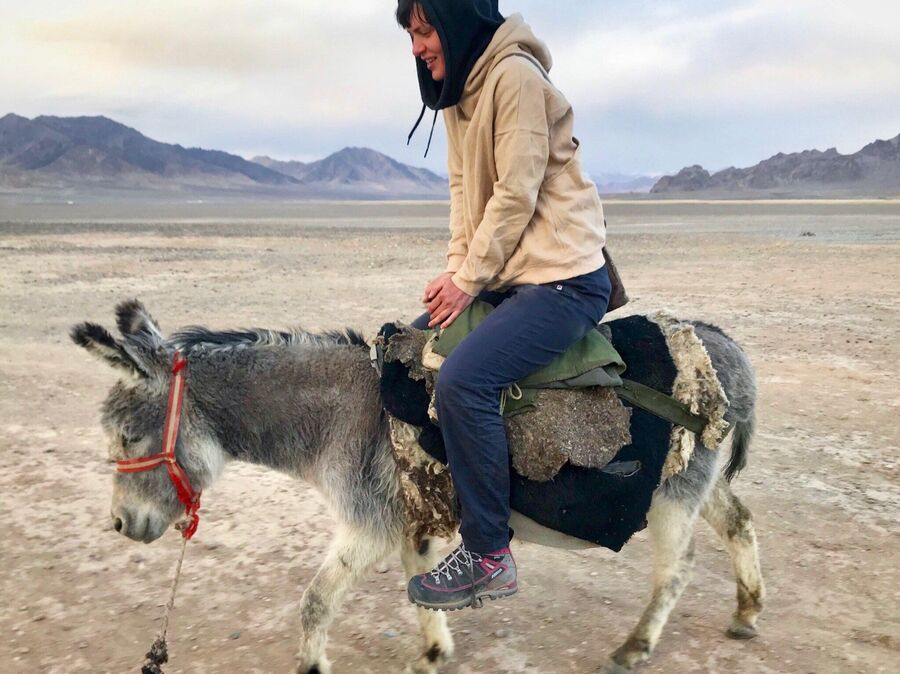 Покупаем ослика, Мургаб, Таджикистан