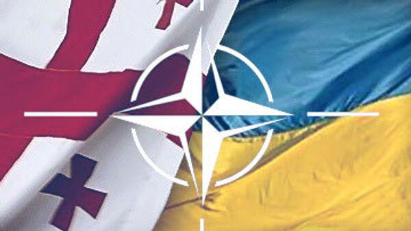 Грузия, Украина, НАТО