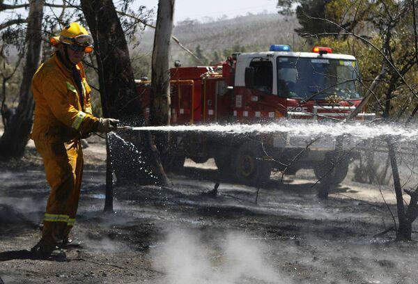 Ликвидация лесных пожаров в Австралии
