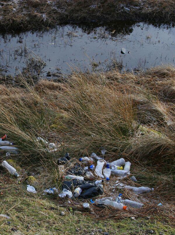 Около 48 куб. м мусора собрали во время акции Чистый лес в Измайлово