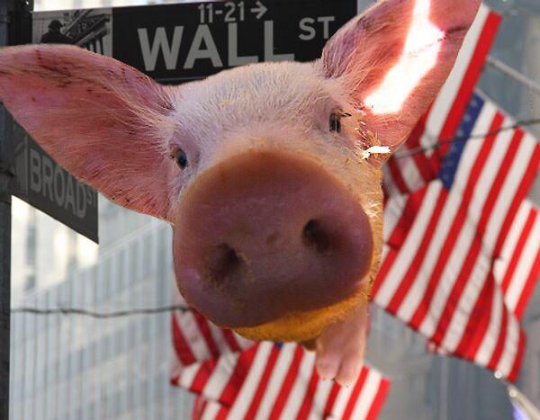 Wall Street, свинья
