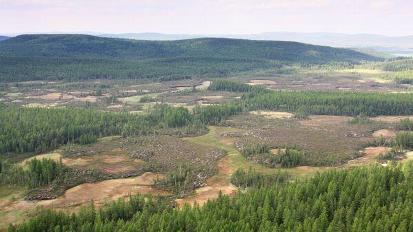 Тайга в районе падения Тунгусского метеорита, архивное фото