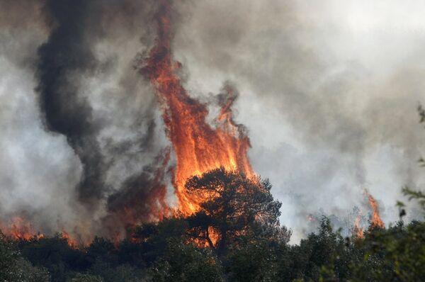 Ситуация с пожарами вблизи Афин остается сложной