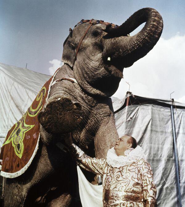 Дуров репетирует со слоном