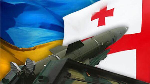 При поставках Грузии оружия Украина соблюдала все нормы - Джалагания