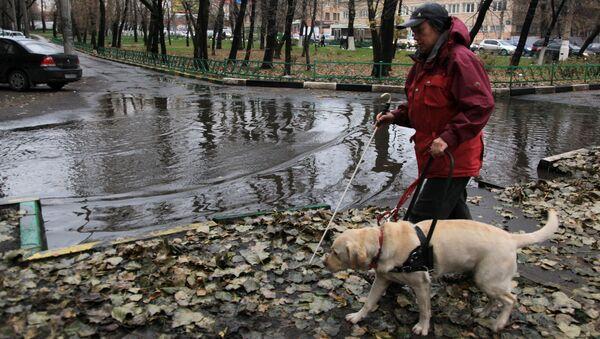 Тренировка собак-поводырей в Москве