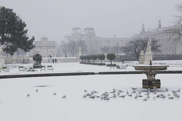 Обильный снегопад прошел во Франции