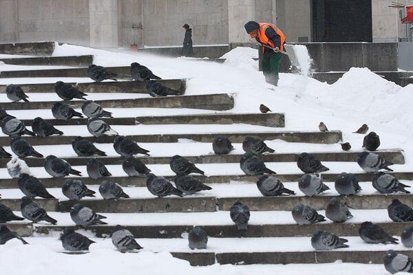 Дворники пытаются ликвидировать зимнюю сказку на улицах Москвы