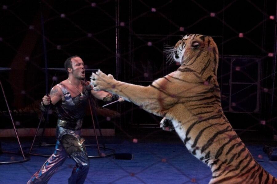 Артур Багдасаров с усурийскими тиграми