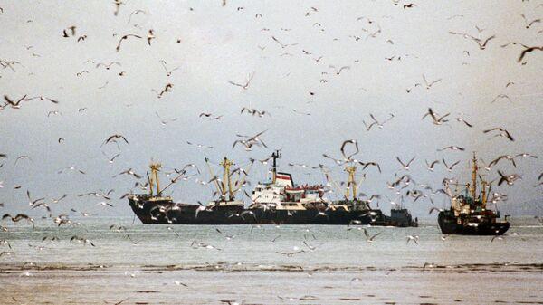 Рыболовецкие судна