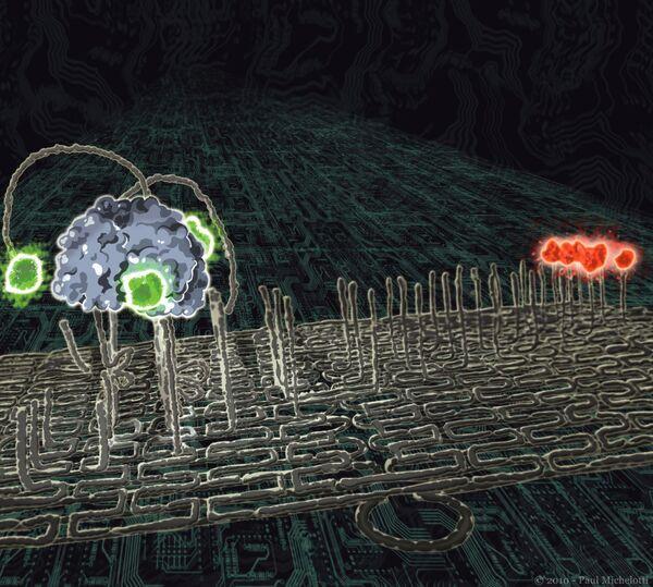 Ученые создали на основе молекул ДНК четырехногого робота
