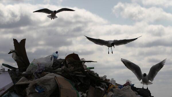 Центры переработки мусора в москве