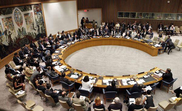 Совещание в штаб-квартире ООН по вопросу нападения Израиля на флотилию. Архив
