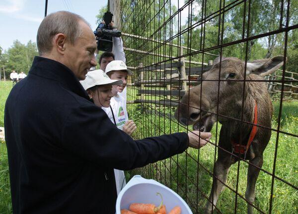 Премьер-министр РФ Владимир Путин посетил парк Лосиный остров