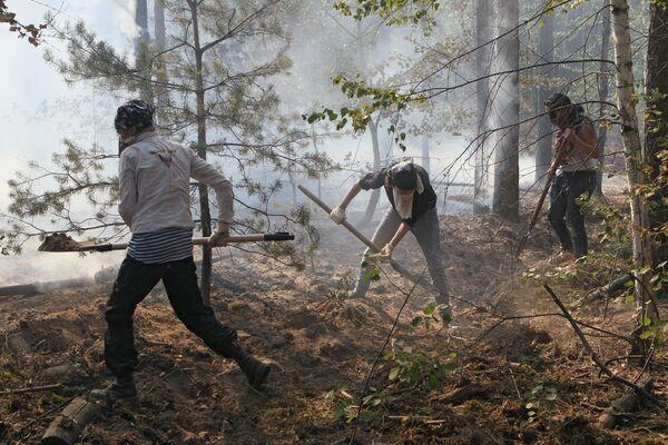 Тушение лесных пожаров в Воронежской области